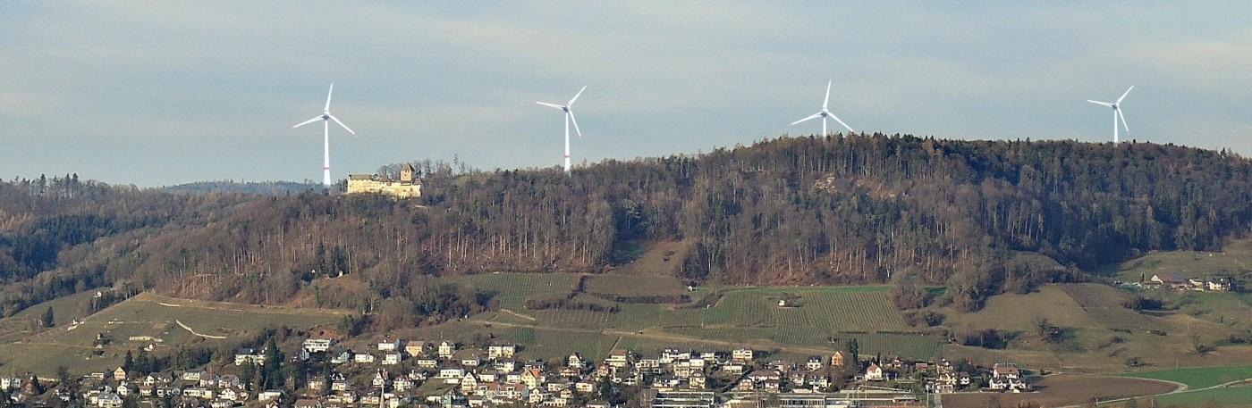 Windräder zerstören Wälder